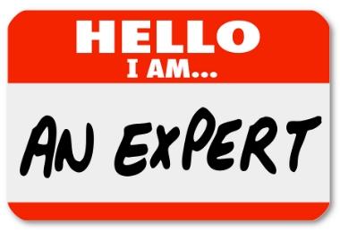 An Expert?